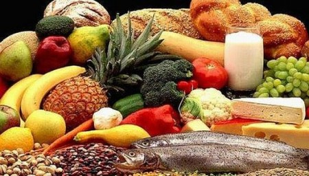 healthy_food_web_0