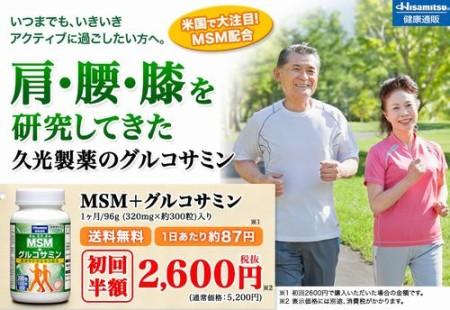 hisamitsu-msm1